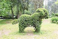 植物狗狗造型