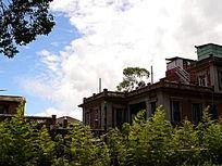 绿色拥抱的别墅