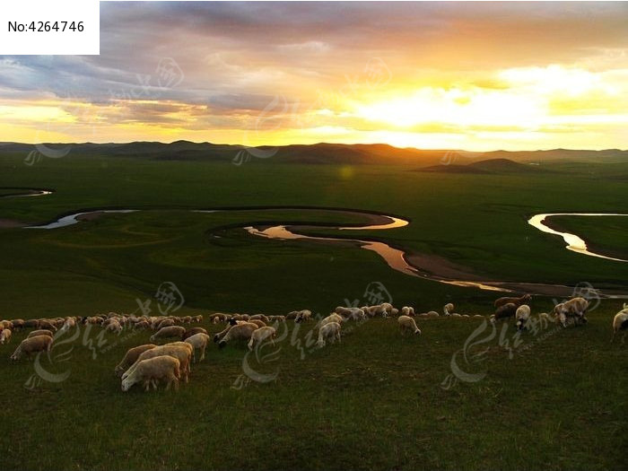 草原河湾 羊群 夕照图片