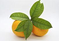 带叶的两个橙子