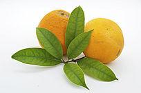 两个带叶子橙子