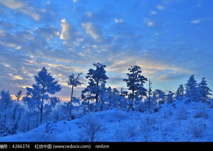 原创摄影图 自然风景 森林树林 林海雪原晨曦
