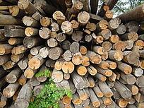 木头切割纹理