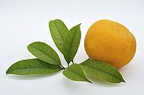 一个带叶子橙子