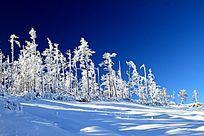 原始森林冬季雪韵