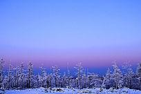 暮色苍茫的山林雾凇