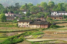 柳州市郊区村庄
