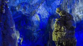 织金洞人猿泰山
