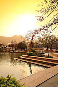 大小梅沙奥特莱斯商业广场园林景观