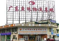 广东鱼珠物流基地