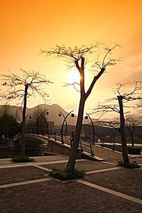 深圳大小梅沙奥特莱斯商业广场园林