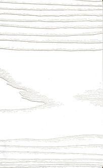 象牙白自然实木板木形纹络木纹树木材质贴图高清质感木板