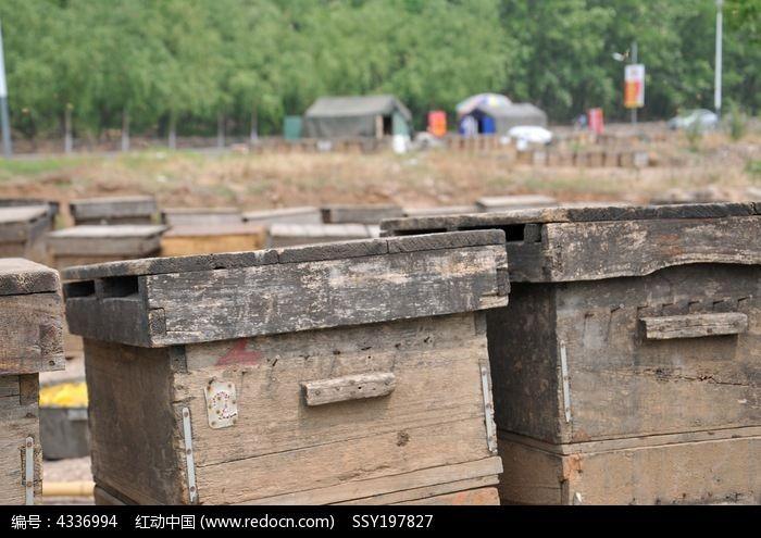水泥蜂箱结构图片