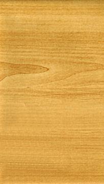 楠木木纹树木材质贴图高清照片