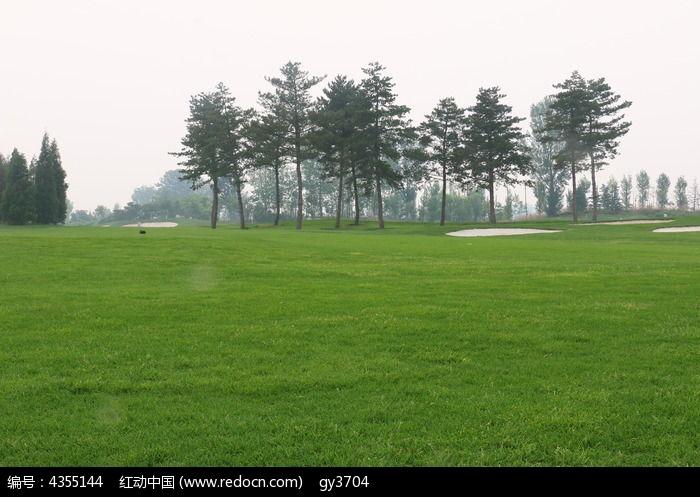 原创摄影图 自然风景 森林树林 草地公园  请您分享: 红动网提供森林