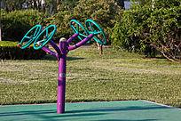 绿地上的健身器材
