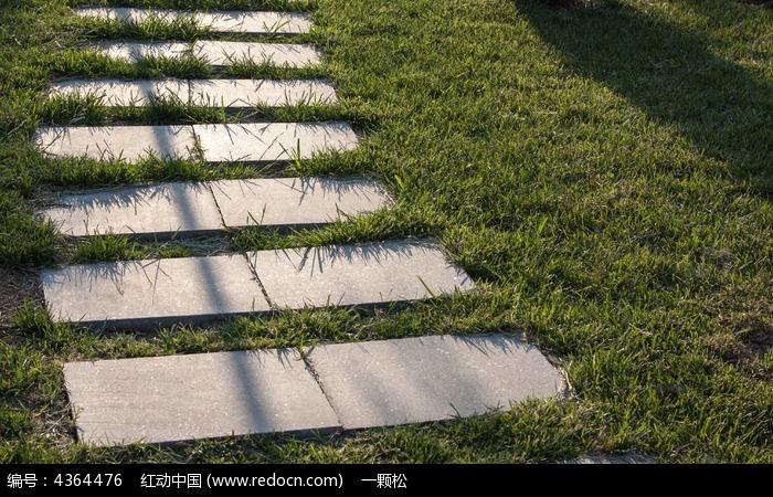 草地中的石板路高清图片下载 编号4364476 红动网