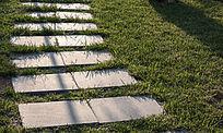 草地中的石板路