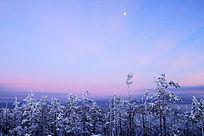 原始森林冬雪暮色