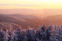 原始森林雪景暮色