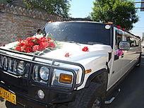 早上出门见一大婚的车上的太阳花