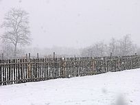 雪中的木栅栏