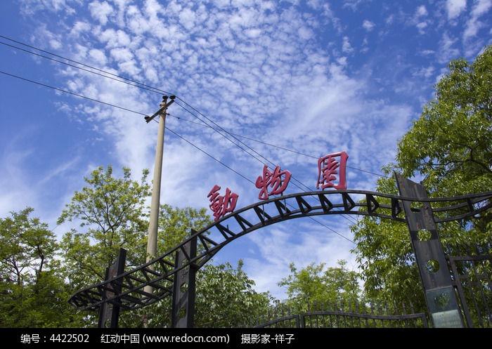 动物园高清图片下载_红动网