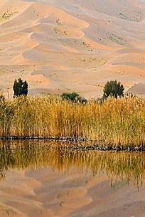 巴丹吉林沙漠之湖