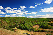 额尔古纳山林风景