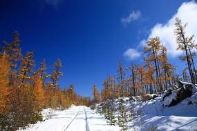 金秋山林雪路