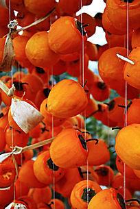 晾晒中的柿子