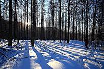 阿尔山林海雪原