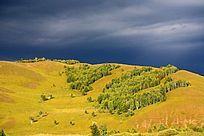 阴云下的山脉与白桦树