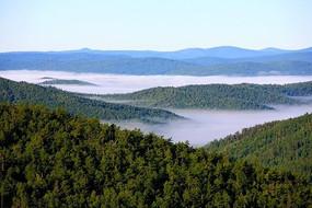 原始森林云海