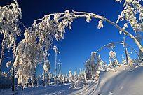 大兴安岭林海雪原