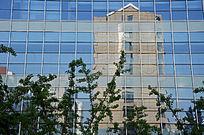 玻璃幕墙反射的住宅区