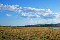 湿地草甸风景