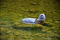 水中的乌龟雕塑