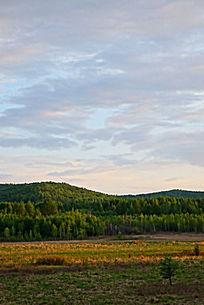 大兴安岭山林草甸风景