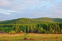 山林草甸风景