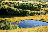 湿地秋季风光