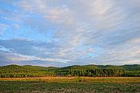 树林草甸风景