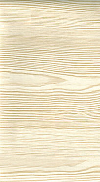 白松木形纹络木纹树木材质贴图高清质感照片