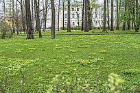 俄罗斯园林景观