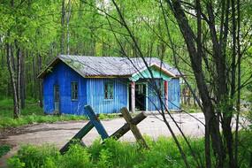 森林木屋景观