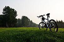 草地上的美利达自行车
