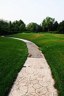 高尔夫球场草地里的石板路