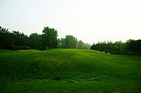 高尔夫球场的草地