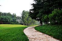 高尔夫球场上的石板道路