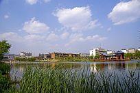 绿意盎然的湖畔公园